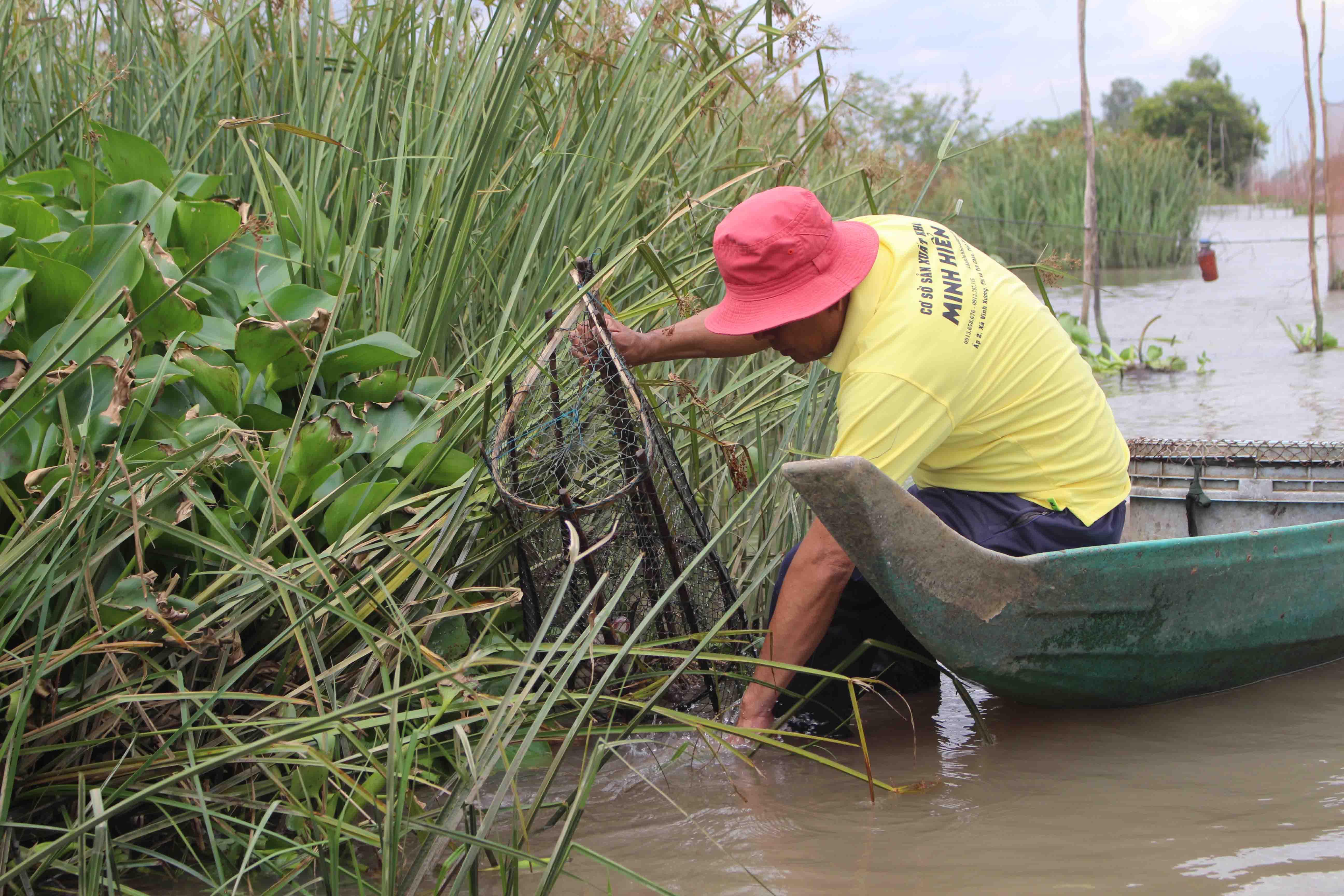 Khai thác cá thiên nhiên làm khô